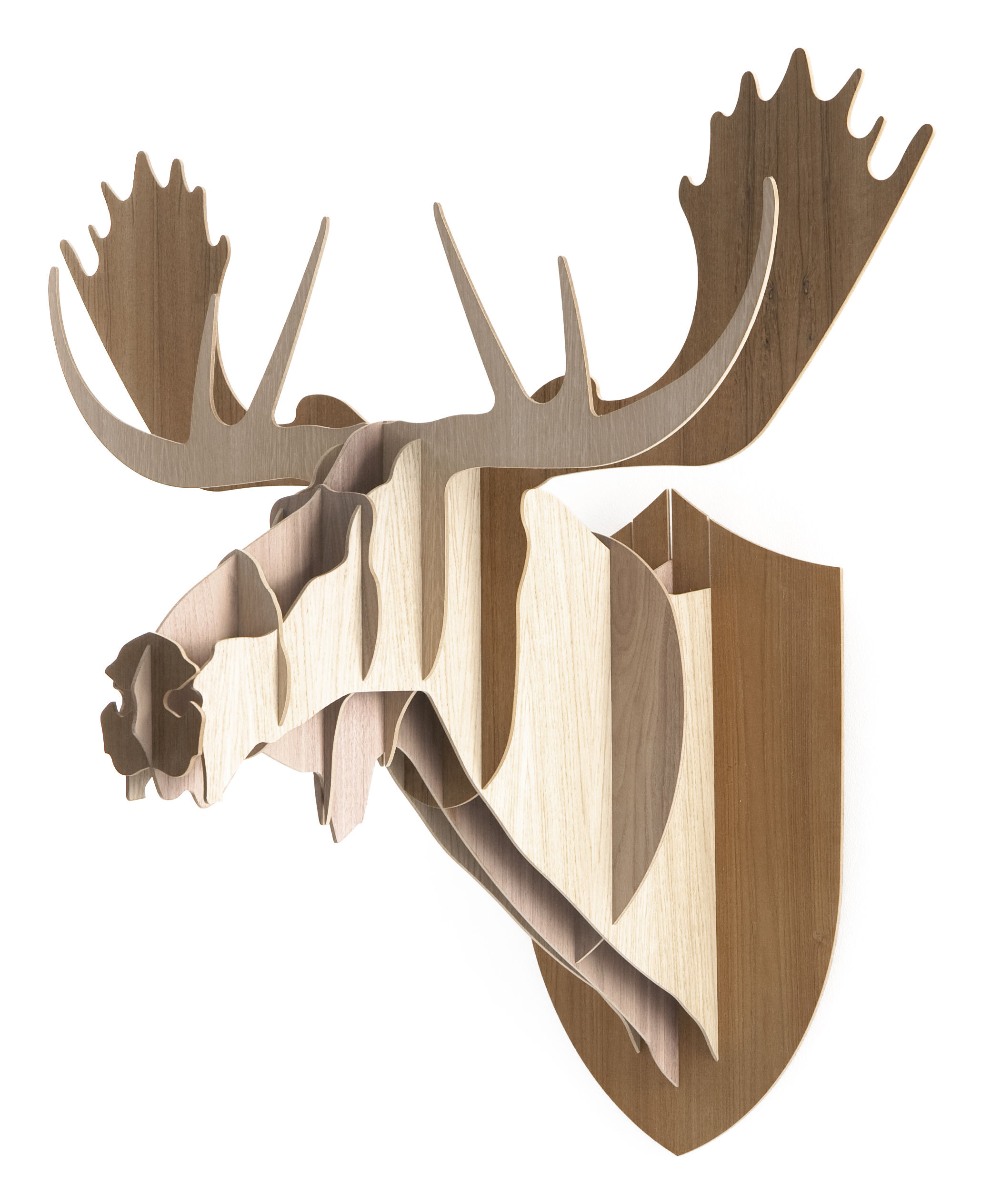 Dekoration - Spaßig und ausgefallen - Trophäe H 86 cm - dreifarbige Version - Moustache - H 86 cm - 3 Holznuancen - Eiche, Nussbaum, Teakholz