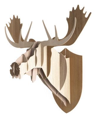 Déco - Tendance humour & décalage - Trophée Elan - H 86 cm / Version tricolore - Moustache - H 86 cm - 3 nuances de bois - Chêne, Noyer, Teck