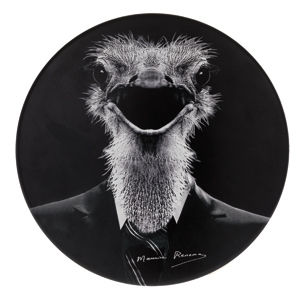 Furniture - Teen furniture - Tam Tam Renoma Mythologie Stool - Ostrich by Stamp Edition - White body / patterned seat. - Polypropylene