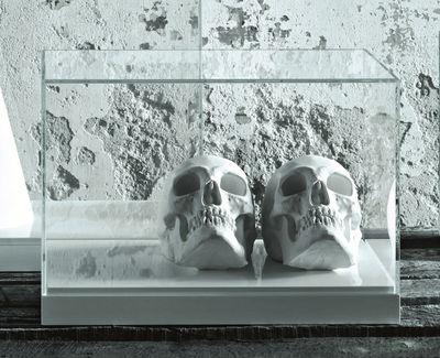 Interni - Oggetti déco - Vetrinetta Teche 250 x 30 cm - 50 x 30 cm di Glas Italia - 50x30 cm - Trasparente / bianco - Vetro