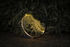 O Lamp - / LED - Ø 90 cm - Motion detectors by Artemide