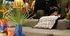 Flora & Fauna - Dots Cushion - / 66 x 66 cm by Sancal