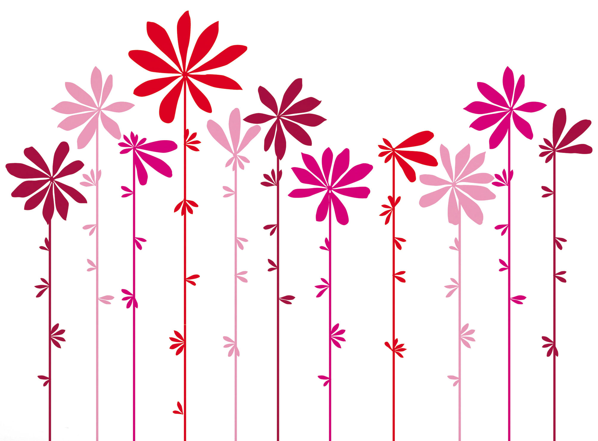Decoration - Wallpaper & Wall Stickers - Tournesol Pink Sticker by Domestic - Pink - Vinal