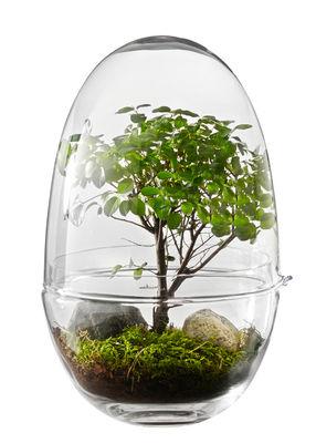 Decoration - Flower Pots & House Plants - Grow X-Large Greenhouse - Ø 20 x H 32 cm by Design House Stockholm - H 32 cm / Transparent - Mouth blown glass