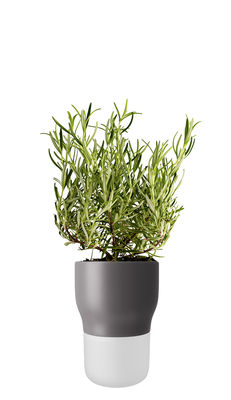 Déco - Pots et plantes - Pot à réserve d'eau / Medium - Ø 11 x H 15 cm - Eva Solo - Gris nordique - Céramique, Verre dépoli soufflé bouche