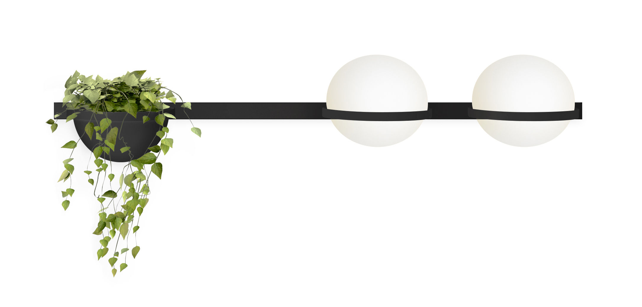 Lighting - Wall Lights - Palma Wall light - / Horizontale double & jardinière by Vibia - Laqué graphite mat - Aluminium, Opalin mouth blown glass, PMMA