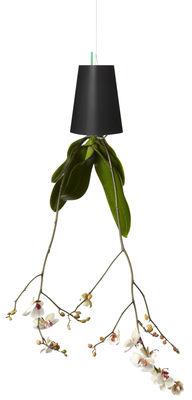 Decoration - Funny & surprising - Sky Polypropylene Planter - Polypropylene Small - H 12.9 cm / Upside down planter by Boskke - Black - Recycled polypropylene