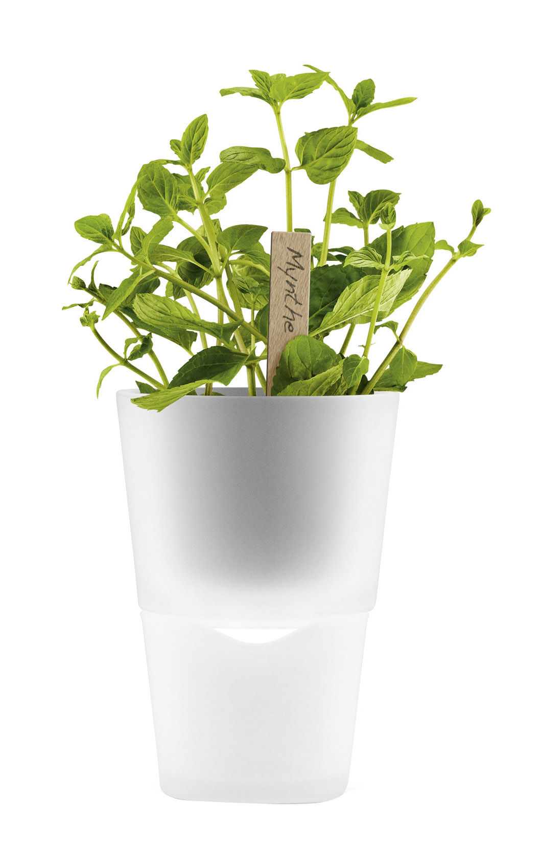 Outdoor - Pots & Plants - Flowerpot - with water tank - Ø 11 cm - Glass by Eva Solo - Frosted glass - Glass, Plastic
