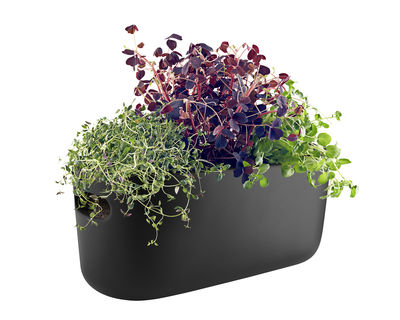Déco - Pots et plantes - Pot à réserve d'eau Herb / Bac à herbes aromatiques - Céramique - Eva Solo - Noir - Céramique, Nylon, Plastique