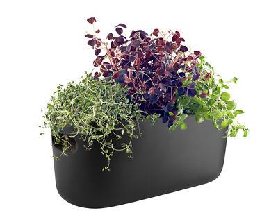 Pot à réserve d'eau Herb / Bac à herbes aromatiques - Céramique - Eva Solo noir en céramique