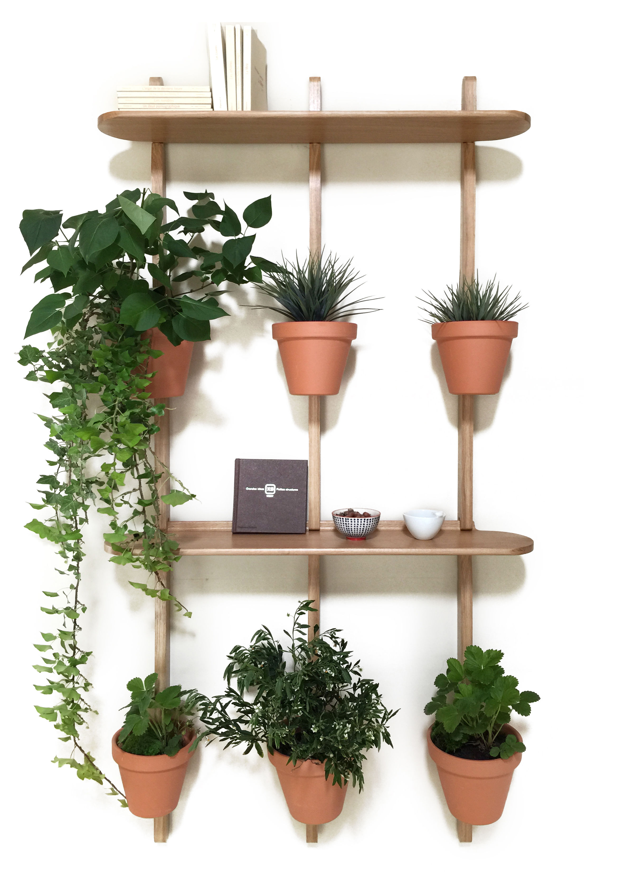 Furniture - Bookcases & Bookshelves - XPOT Shelf - / 2 round shelves L 100 cm + 3 supports H 200 cm by Compagnie - Oak - Varnished solid oak