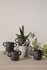 Pot de fleurs Mus Small / Grès - H 9 cm - Ferm Living