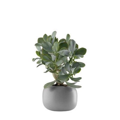 Decoration - Flower Pots & House Plants - Stone Flowerpot - / Ø 16 cm - Ceramic by Eva Solo - Ø 16 cm / Grey - Ceramic