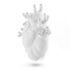 Vaso Love in Bloom - Gigante / Cuore umano - Resina / H 60 cm di Seletti