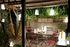Lampada senza fili Balad Bamboo - / H 12 cm - Set di 3 lampade di Fermob