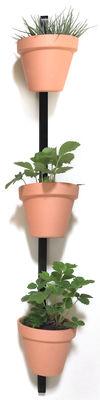 Image of Supporto a parete XPOT / Per 3 vasi da fiori o mensole - H 150 cm - Compagnie - Nero - Legno