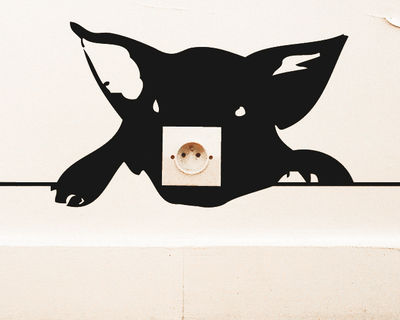 Interni - Sticker - Sticker Zoo Cochon di Domestic - Nero - Vinile