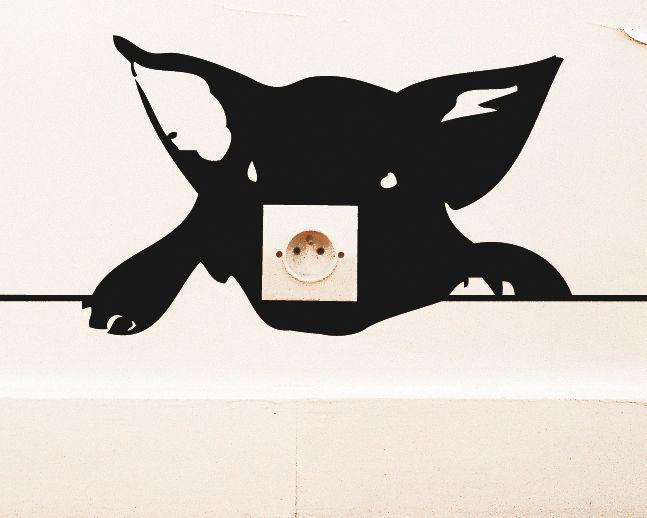 Interni - Sticker - Sticker Zoo Cochon di Domestic - Nero - Vinile