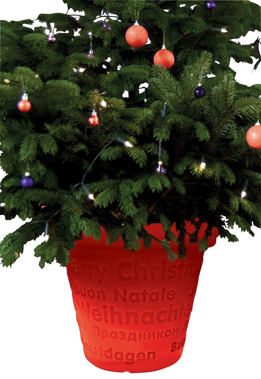 Mobilier - Mobilier lumineux - Pot de fleurs lumineux Bloom X-Mas / H 50 cm - Bloom! - Rouge - Polyéthylène