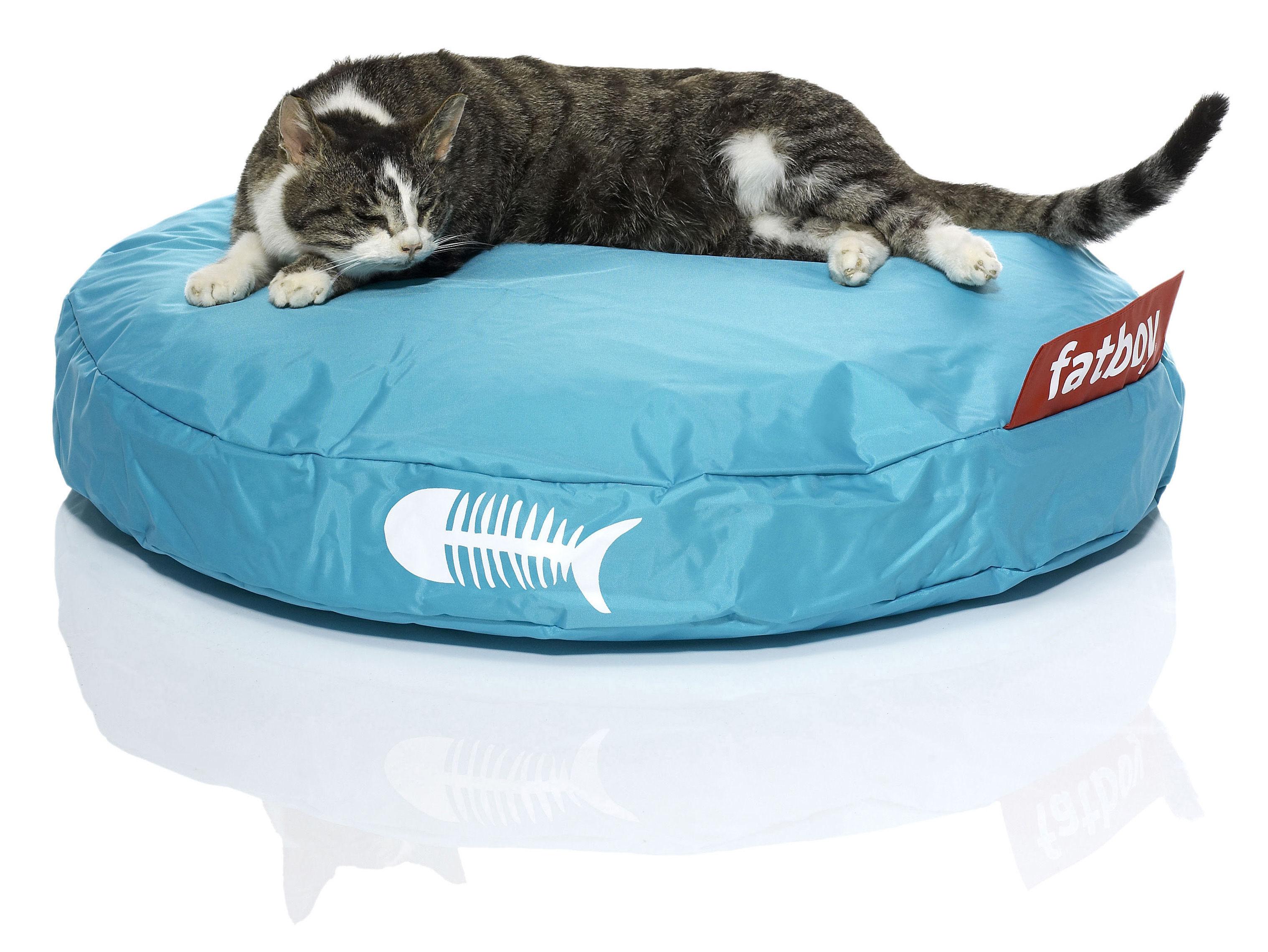 Scopri pouf catbag per gatto turchese di fatboy made in design italia