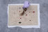 Silhouette Outdoor Outdoor rug - / By Jaime Hayon - 200 x 300 cm / Recycled PET fibre by Nanimarquina