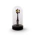 My Little Corner Table lamp - / LED - H 22 cm by Seletti