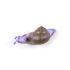Patère Snail Slow / Escargot - Résine - Seletti