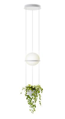 Lighting - Wall Lights - Palma Pendant - / Verticale & jardinière by Vibia - Laqué blanc mat - Aluminium, Opalin mouth blown glass, PMMA