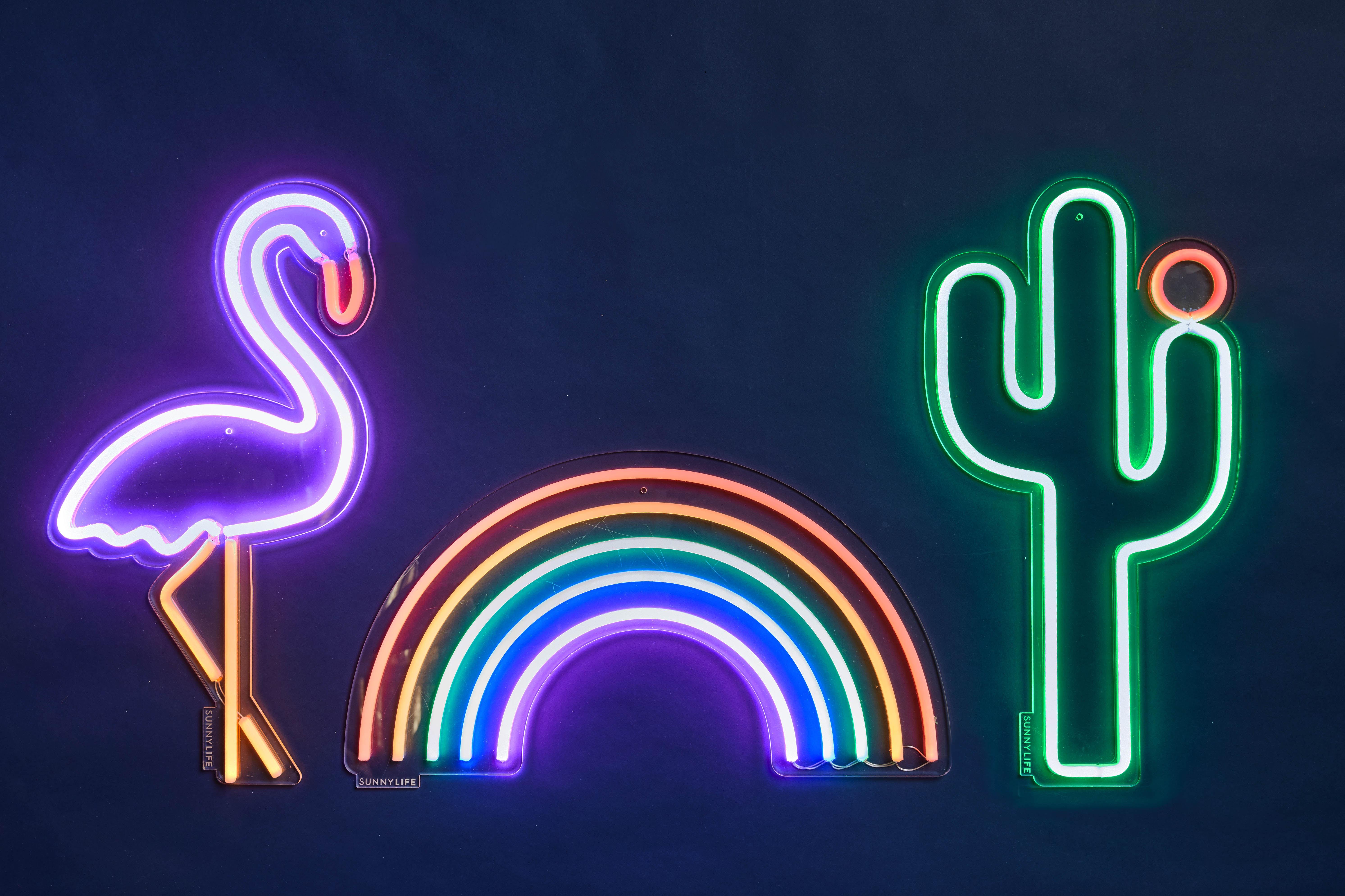 Applique con presa neon cactus large sunnylife cactus l h