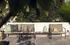 Table basse Avon / 81 x 81 cm - Frêne tehrmo-traité - Houe