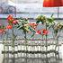 Vaso d'Avril Petit - d'avril - Piccolo formato -  L 55 cm x H 10 cm di Tsé-Tsé