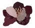 Flores Rug - / 190 x 150 cm by AYTM