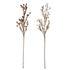 Fleurs séchées artificielles / Set de 2 - H 80 cm - Bloomingville
