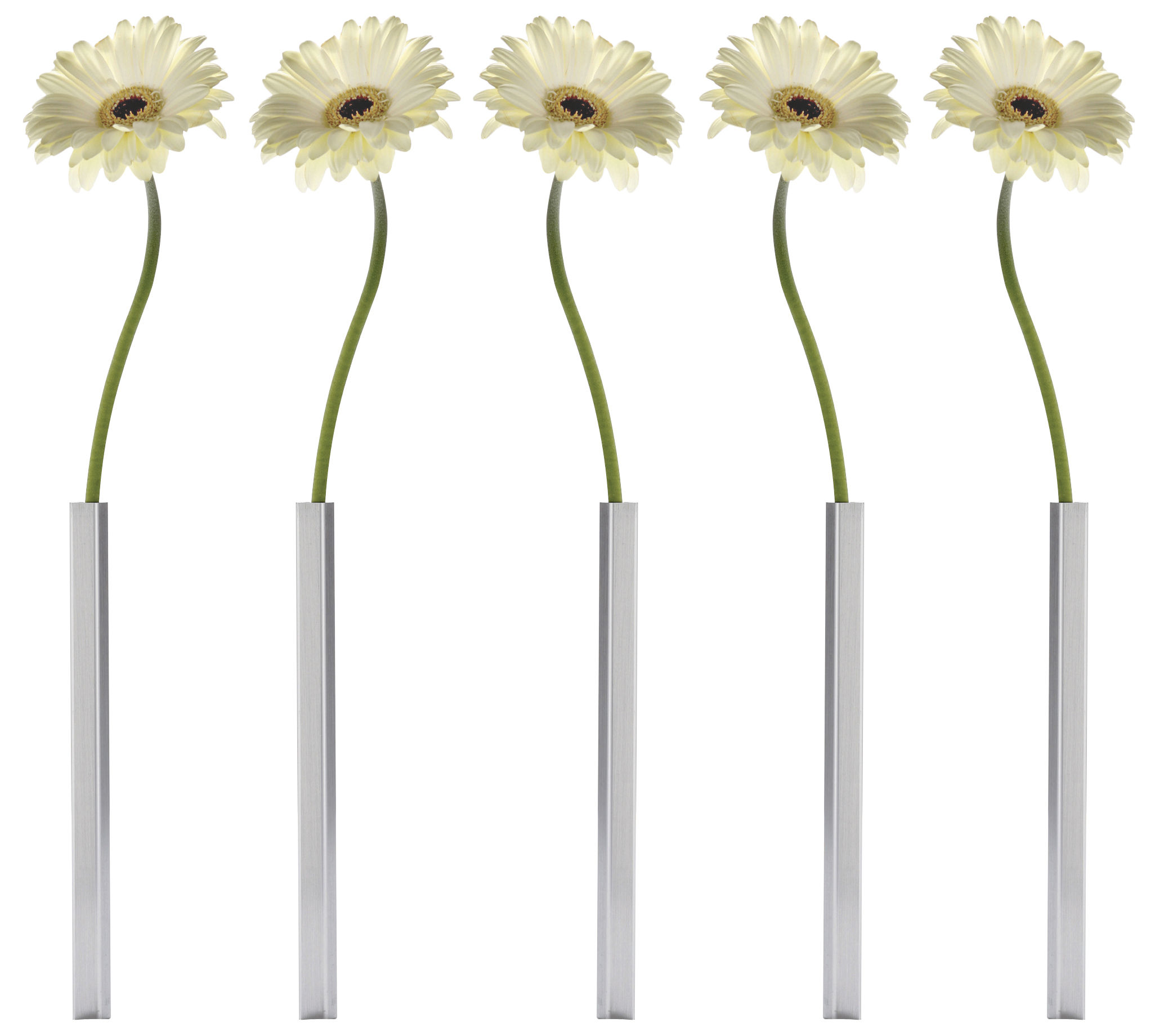 Decoration - Vases - Magnetic Bud vase - Set of 5 by Pa Design - Aluminium - Aluminium