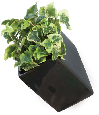 Outdoor - Pots & Plants - Off the wall Wall flowerpot - D 11,5 cm by Thelermont Hupton - Black - Ceramic