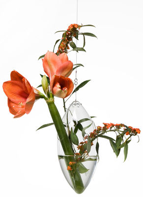 Déco - Vases - Vase Paresseux à suspendre - Tsé-Tsé - Transparent - Verre soufflé