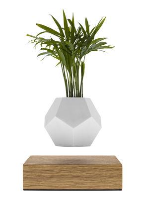Pot de fleurs Lyfe / Pot en lévitation - Flyte blanc,chêne en matière plastique