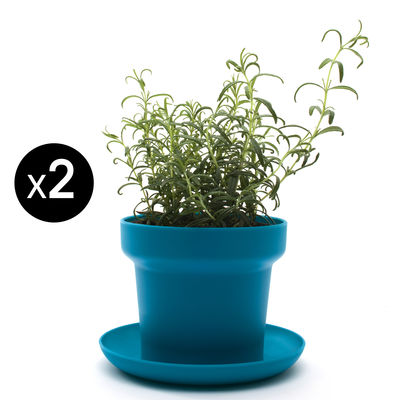 Jardin - Pots et plantes - Pot de fleurs Green / Lot de 2 - Authentics - Bleu - Polypropylène