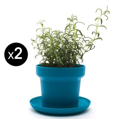 Image of Vaso per fiori Green - / Set da 2 di Authentics - Blu - Materiale plastico