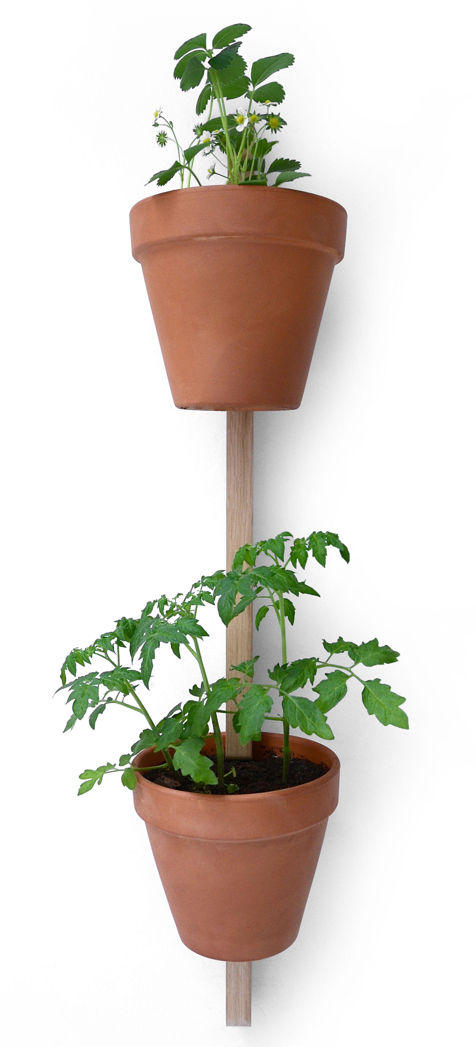 Déco - Pots et plantes - Support mural XPOT / Pour 2 pots de fleurs ou étagères - H 100 cm - Compagnie - Chêne naturel - Chêne massif
