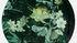 Table basse Medusa Medium / Ø 46 x H 33 cm - Plateau amovible - Ibride