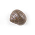 Patère Snail Sleeping / Escargot - Résine - Seletti