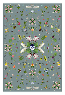 Garden of Eden Teppich / 300 x 200 cm - Moooi Carpets - Grau