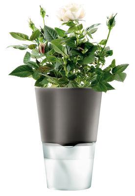 Küche - Einfach praktisch - Blumentopf mit Wasserreservoir - klein - Eva Solo - Klein - Anthrazit - Glas, Keramik