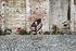 Bell Stapelbarer Sessel / By Konstantin Grcic / recyceltes Polypropylen- Öko-Design - Magis