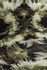Tapis Blushing Sloth / 200 x 300 cm - Moooi Carpets