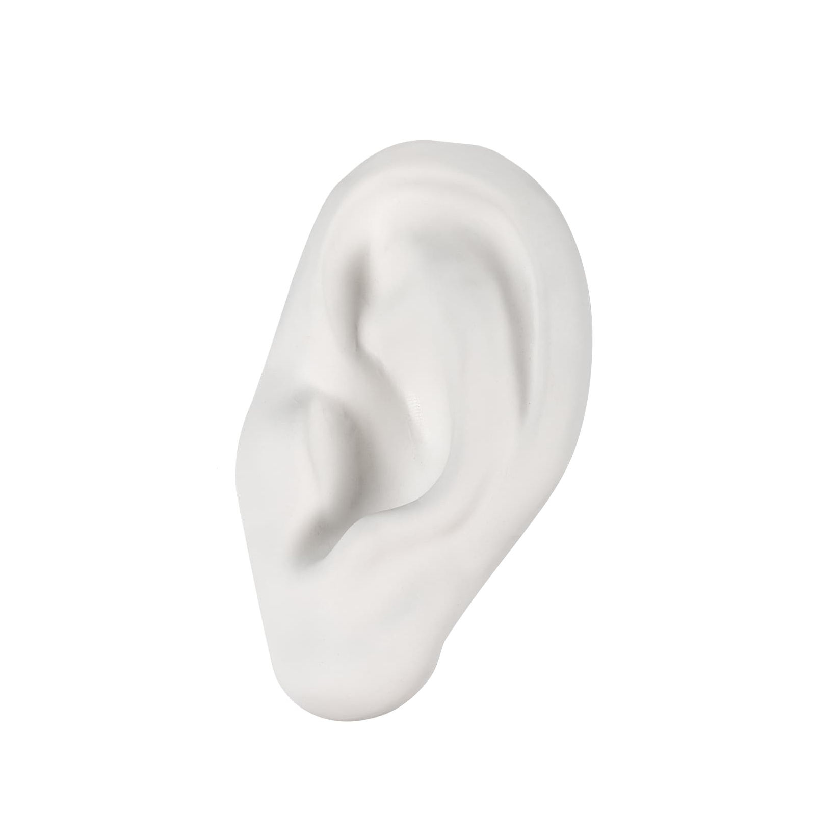 Decoration - Home Accessories - Memorabilia Mvsevm Decoration - / Ear by Seletti - Ear / White - China