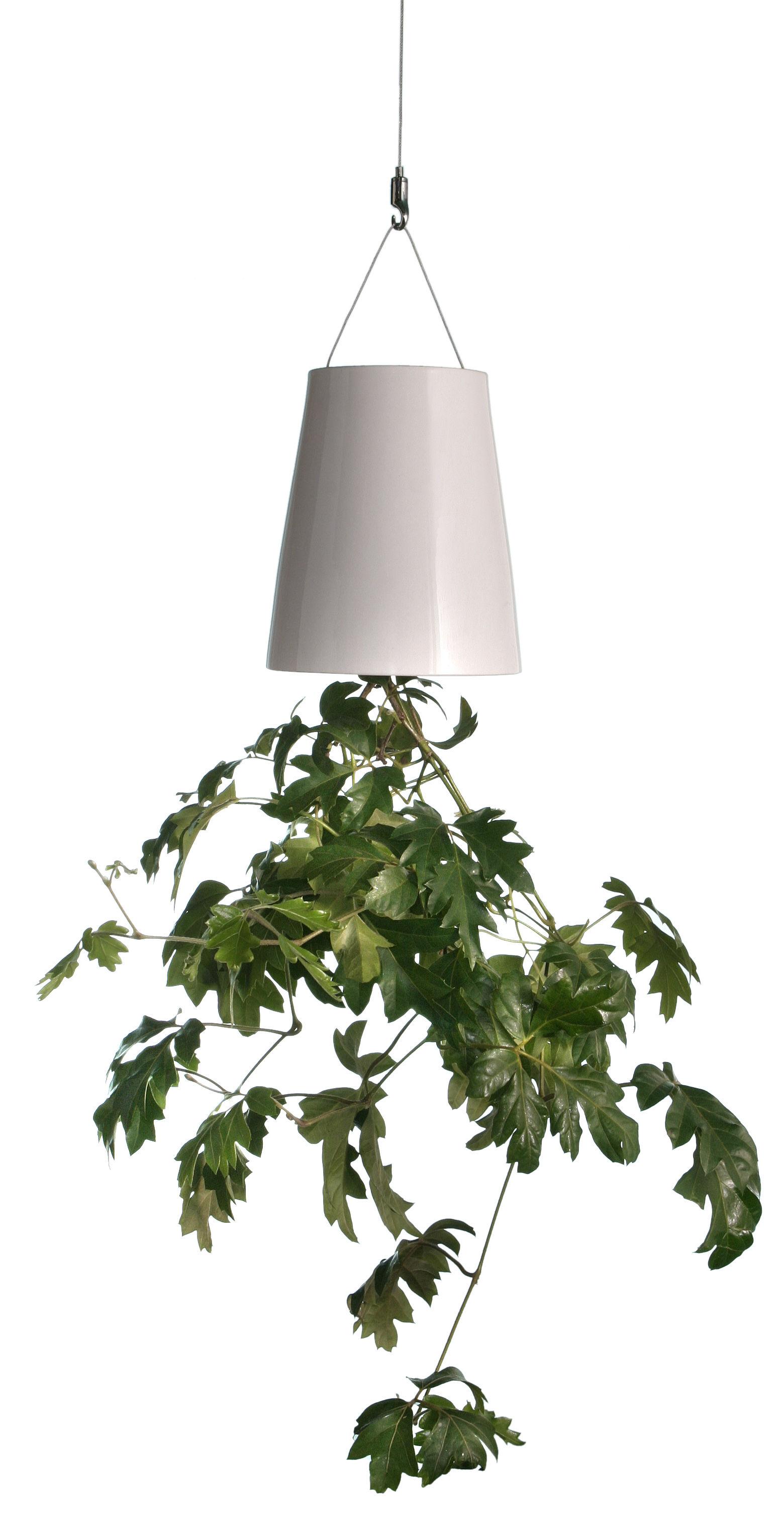 Déco - Tendance humour & décalage - Câble de suspension pour toutes les jardinières Boskke Sky - Boskke - Câble extension plafond - Acier