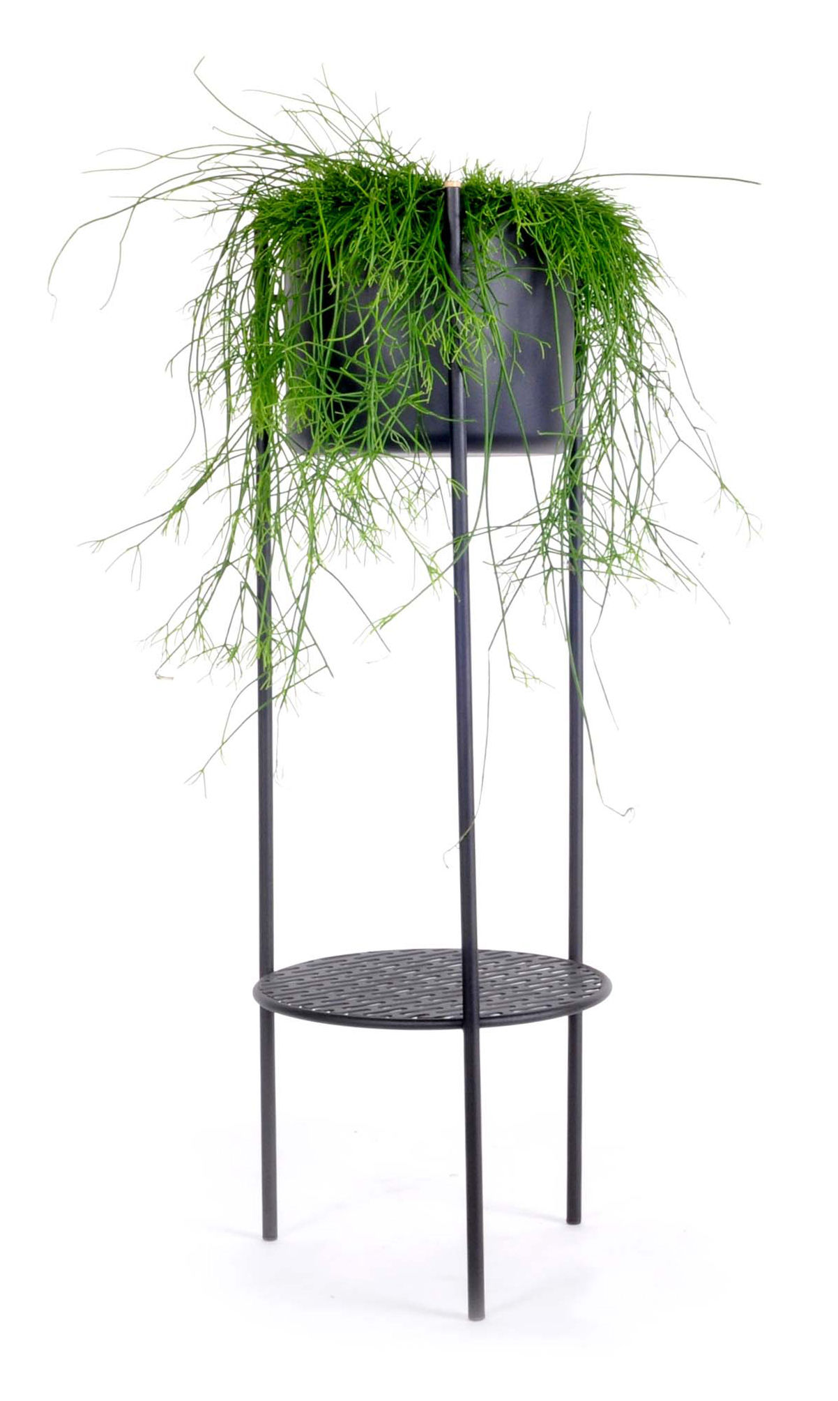Outdoor - Pots & Plants - Ent Large Flowerpot - H 98 cm / Metal by XL Boom - H 98 cm / Black - Epoxy lacquered steel