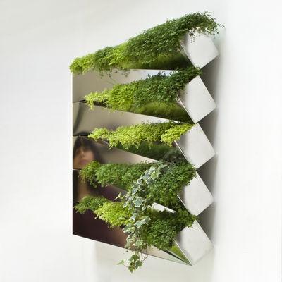 Miroir En Herbe Wand Blumentopf Fur Die Wand Edelstahl By
